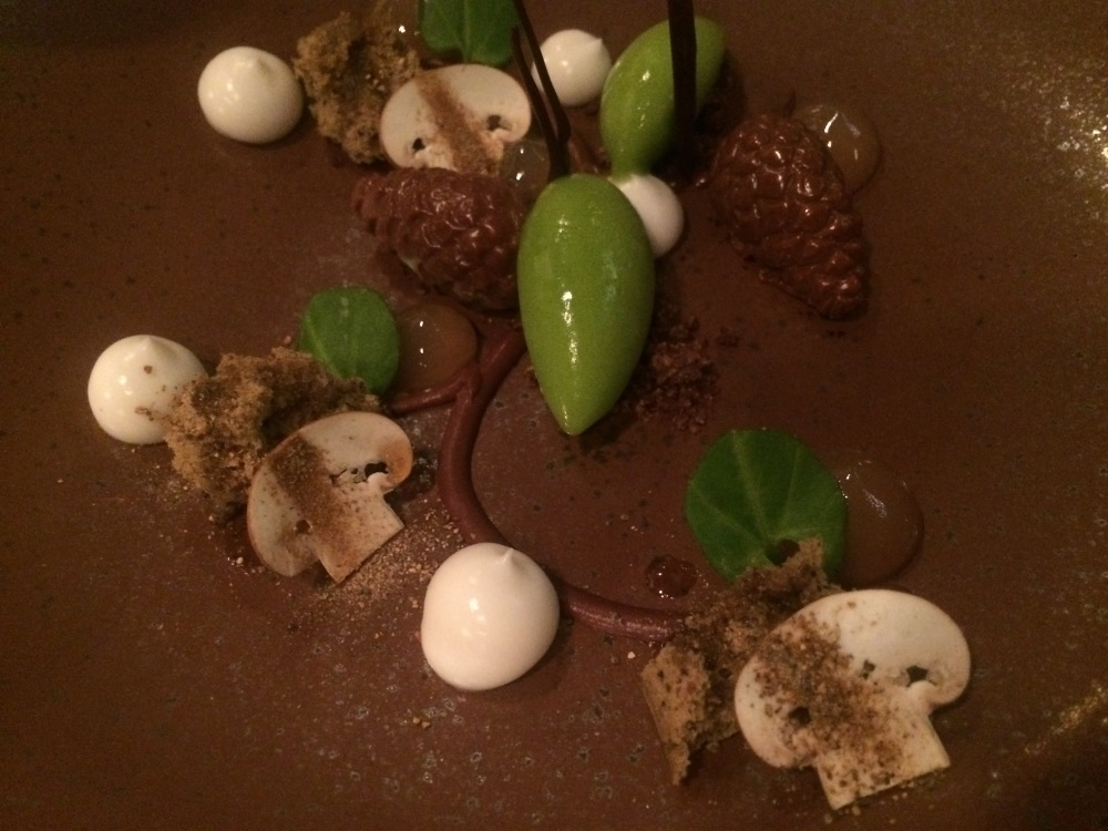 Spruce, chocolate, and mushrooms
