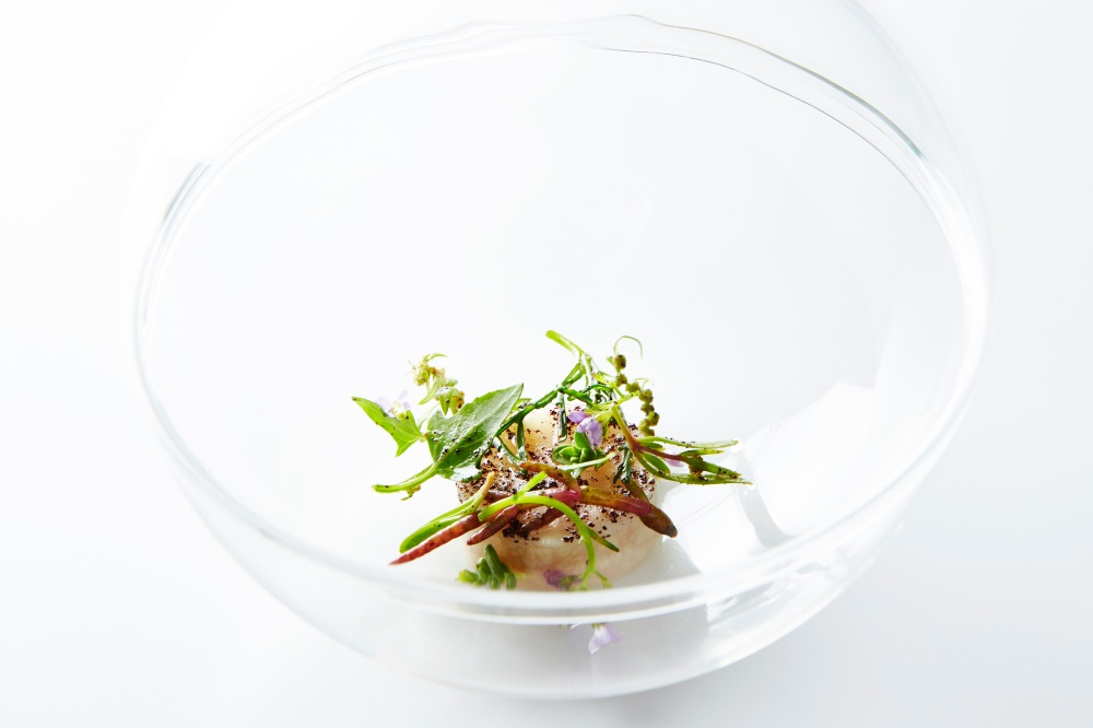 Flavors from the Ocean: Scallop, Celeariac, Beach Plants, Juice from Dried Scallop Roe, Brown Butter